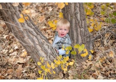 Kingsley Images - Toddler Portrait